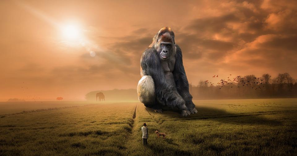 Affe übt sich in der Kommunikationsfähigkeit