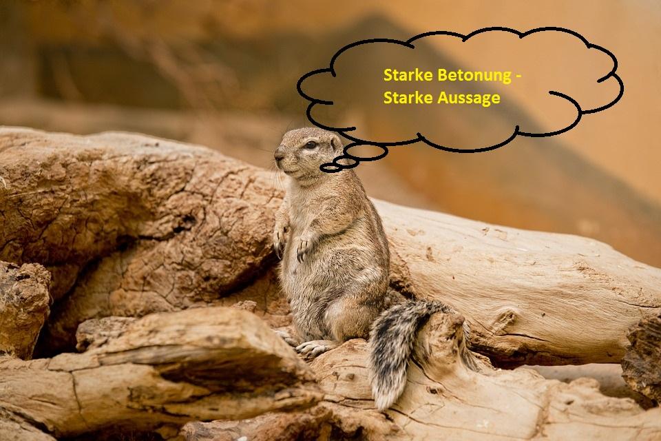 Erdhörnchen Vortrag halten
