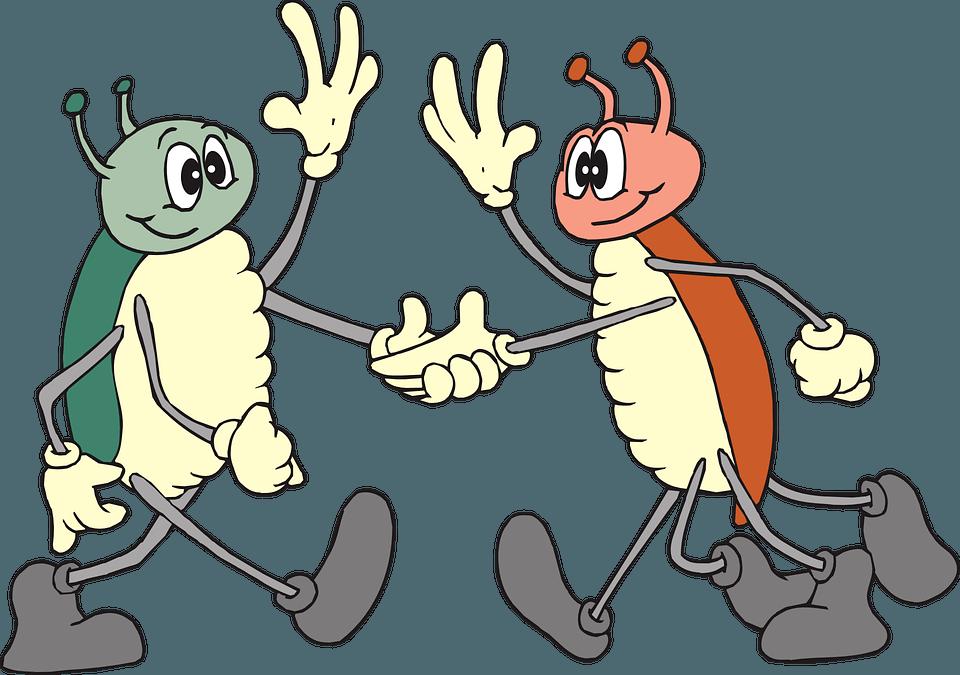 2 Krabbler machen keine Kommunikationsfehler