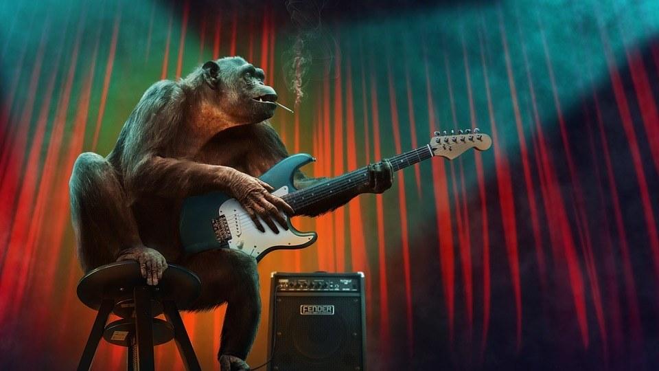 Affe hat kein Lampenfieber