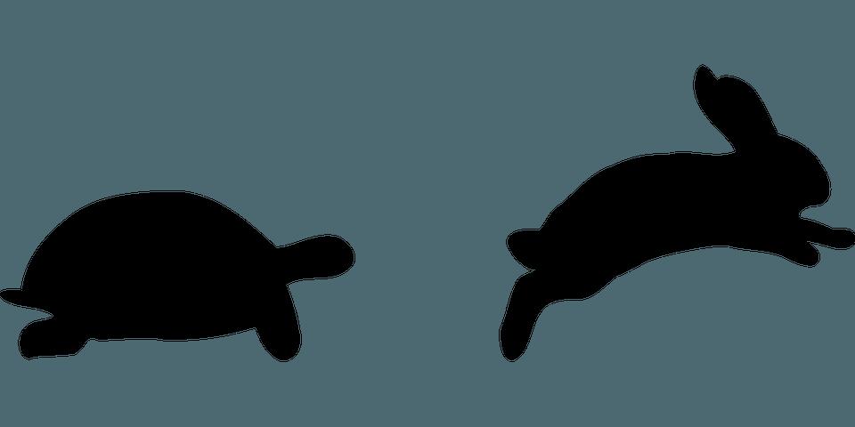 Hase und Schildkröte Überzeugungskraft