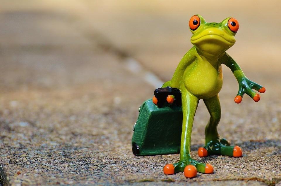 Frosch Ansprache