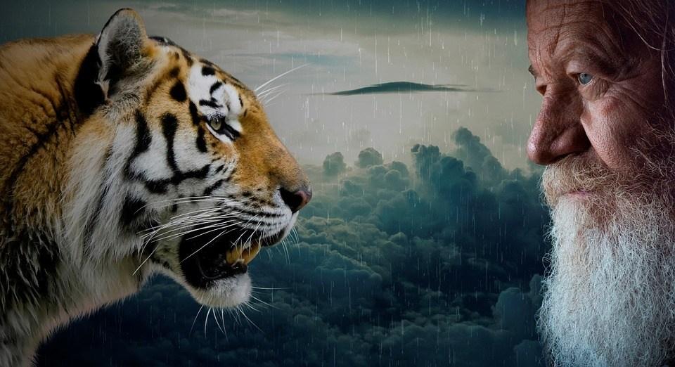 Sicheres Auftreten Älterer Mann und Tiger
