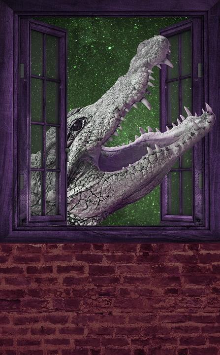 Storytelling Krokodil