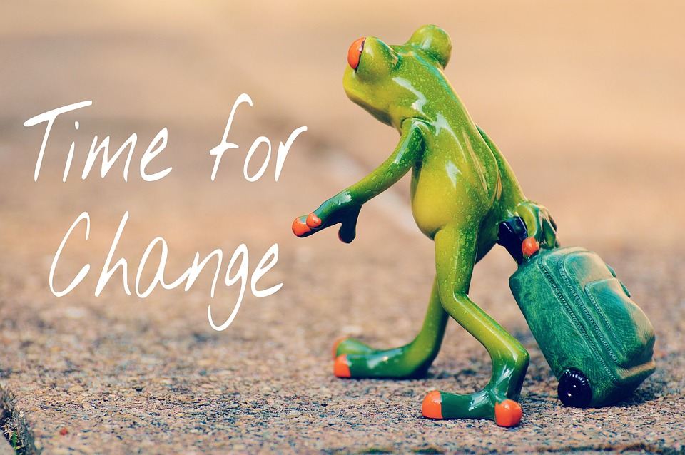 Frosch Time to Change Selbstbewutssein
