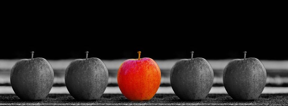 Apfel Kompetenz