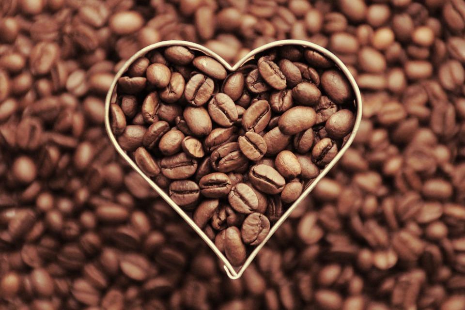 Kaffeeherz Kompetenz