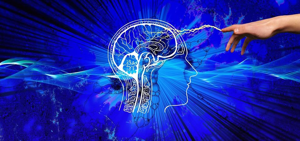 Autosuggestion Gehirn