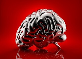 Gehirn Mentaltraining